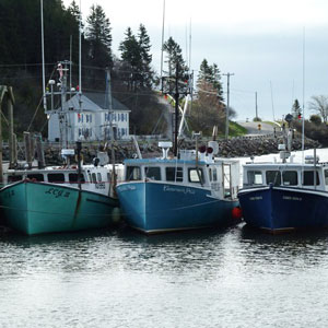 St. Martins Harbour Authority